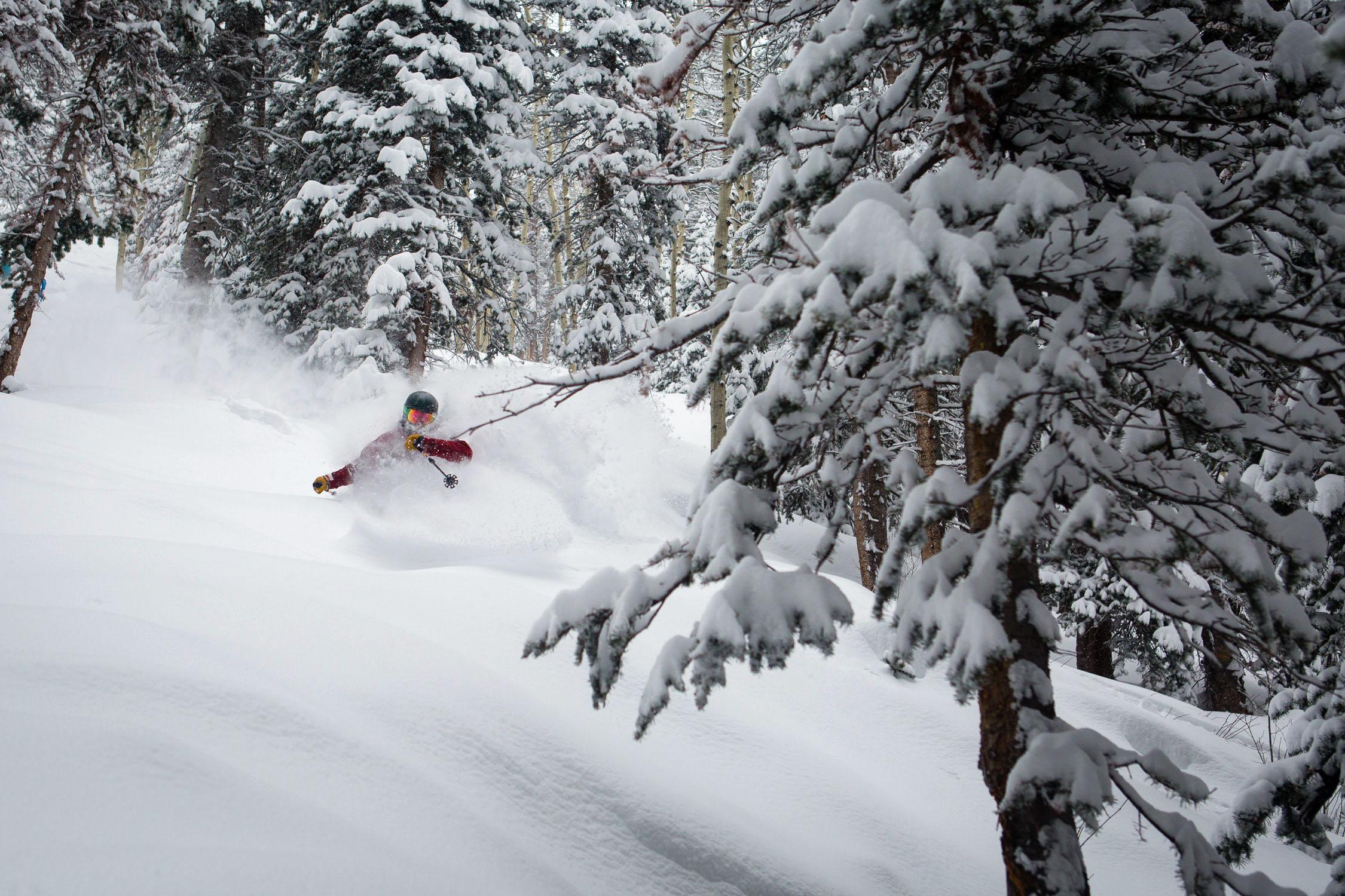 Aspen Snowmass January 31, 2016 powder skiing