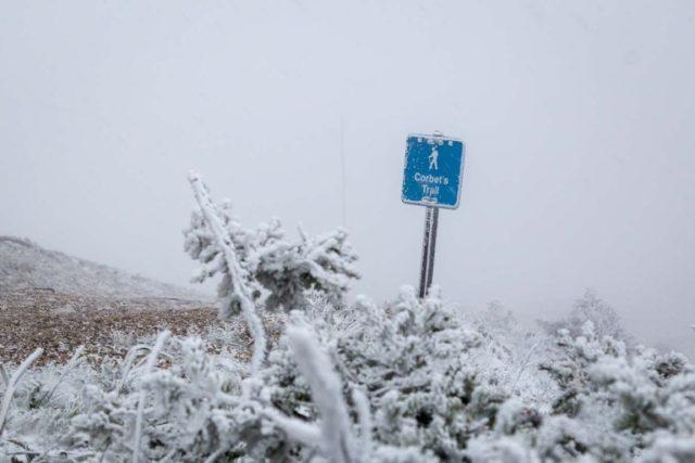 snow-july-20160711-AS-4049-1-768x512