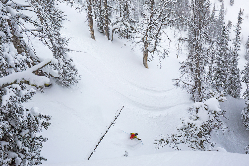 FREESKIER publisher Damian Quigley, lining up a deep power run. Photo: Donny O'Neill